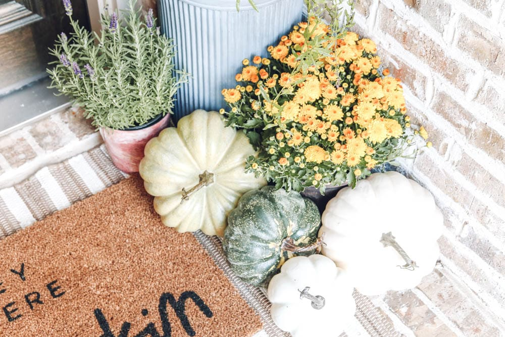 Fall porch details, mums, pumpkins, lavender plants, striped area rug layered with Hey There Pumpkin door mat. Fall decor, fall inspiration. #ABlissfulNest #falldecor #fallinspiration