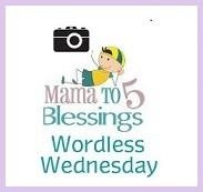 Projektbutton Wordless Wednesday von mamato5blessings com/