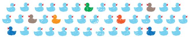 duck banner