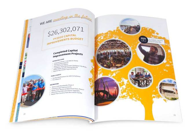 budget mount pleasant annual report 2016