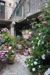 Blooming courtyard in Erice