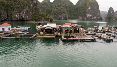And people live in these small floating houses, quite cool.