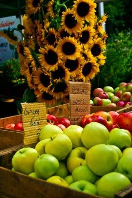 union-sq-market-034 Union Sq Farmers Market - NYC New York  New York Markets Food