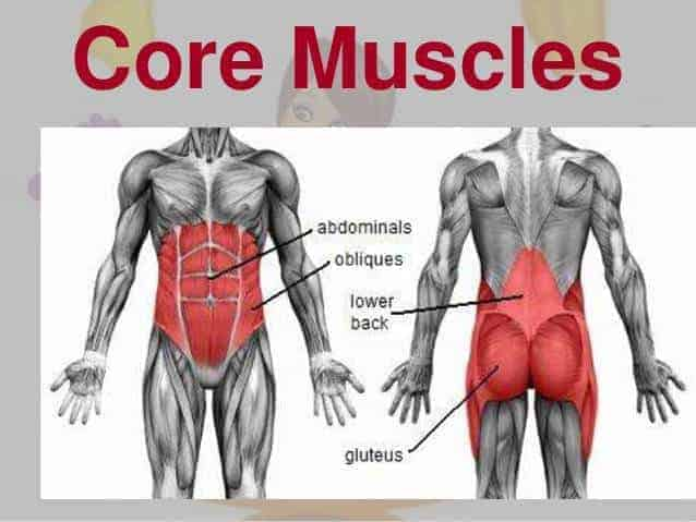 What Is A Good Abs Workout Important Factors Of An