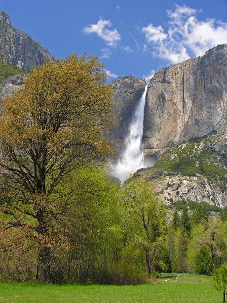 Yosemite Falls at Peak Season