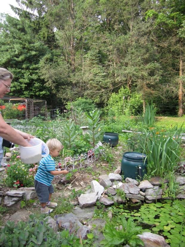 Visiting Aunt Lisa's pond