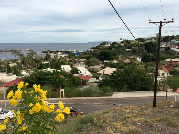 We hiked up the hill overlooking the town and looked down at the marina
