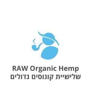 RAW Organic Hemp שלישיית קונוסים גדולים