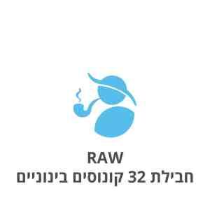 RAW חבילת 32 קונוסים בינוניים