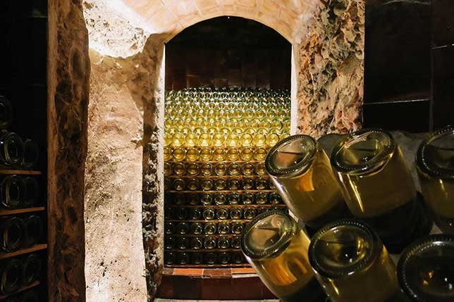 family-winery-penedes