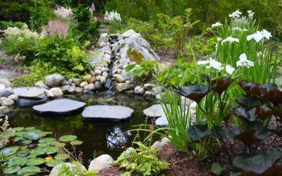 Abound Design Sustainable Landscape Design  hilcrest drive