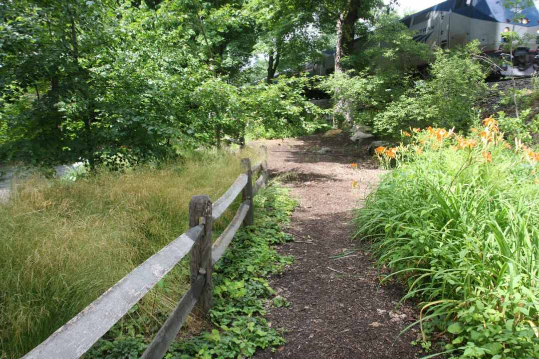 Meadow Street in Amherst MA - Landscape Design - fence