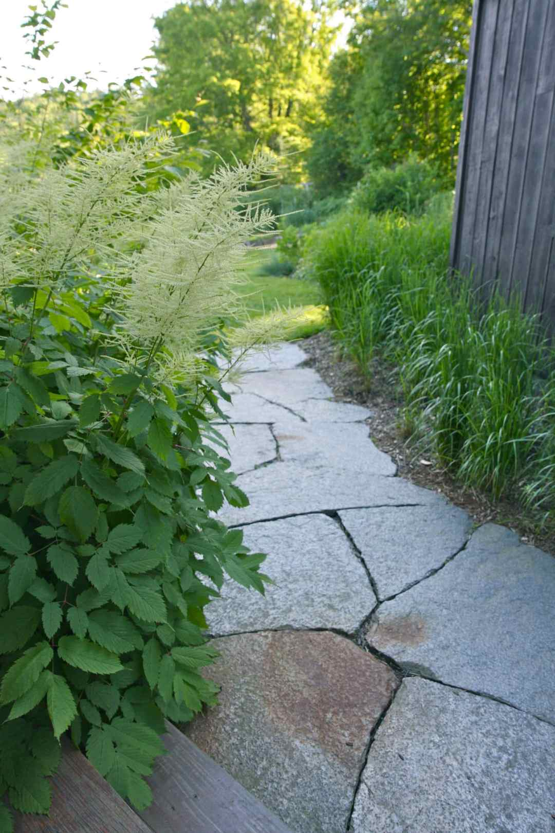 Thistle Hill - Brattleboro VT  - Landscape Design - walkway2