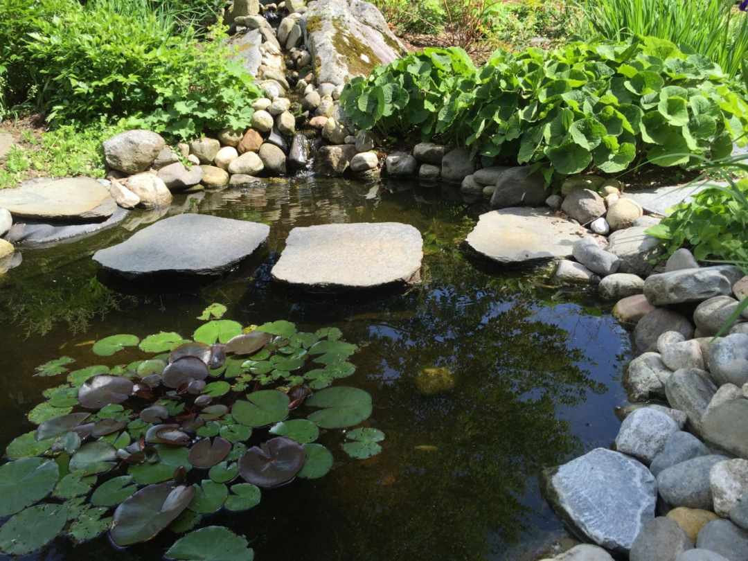 Sustainable Landscape Design and Stonework in Western MA -pond