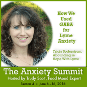 anxiety summit, Lyme anxiety