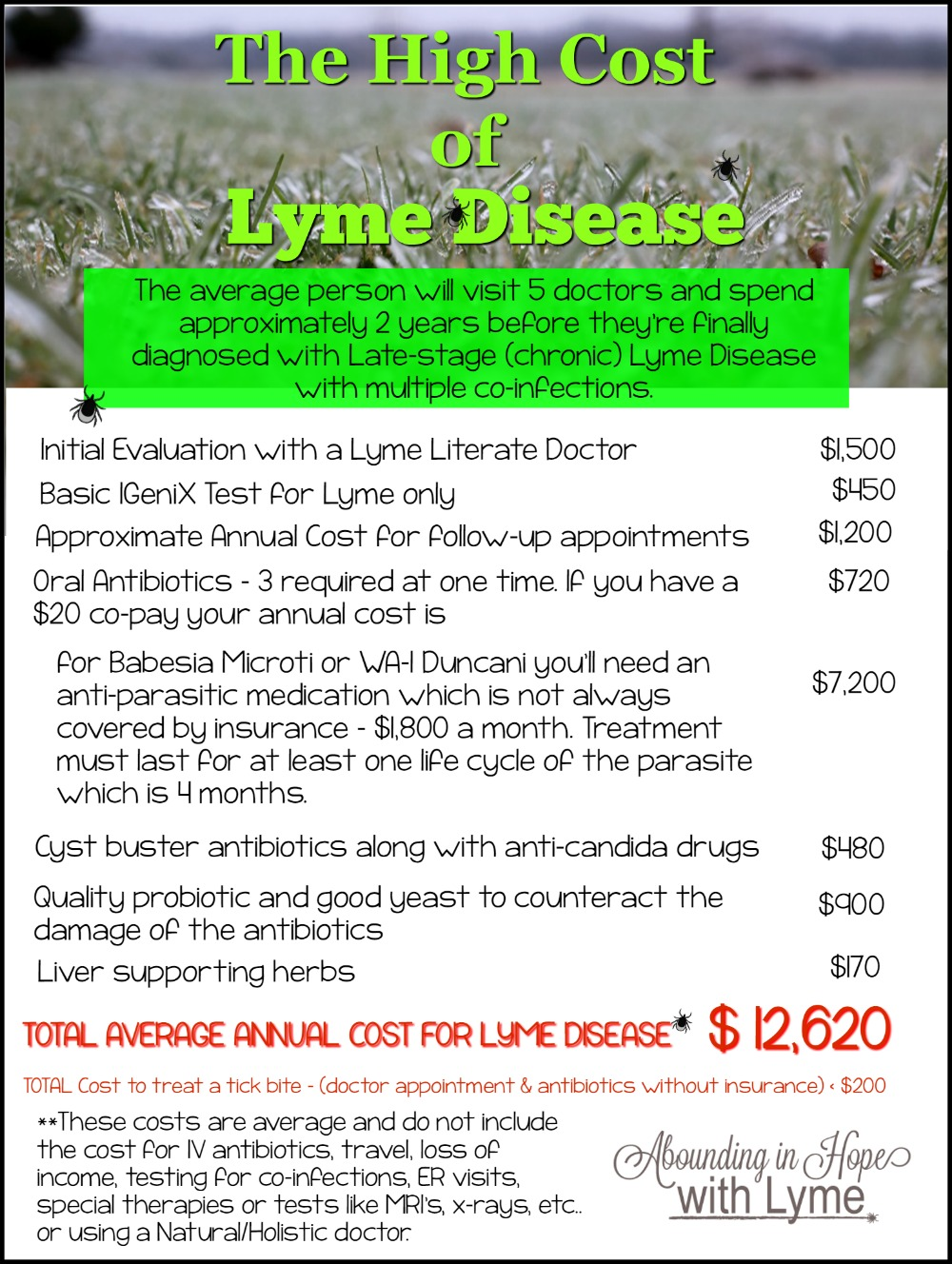 The High Cost of Lyme
