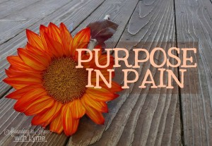 Purpose In Pain
