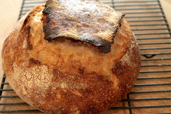 Tasty medieval bread recipe which you can make right now about history tasty medieval bread recipe which you can make right now forumfinder Gallery