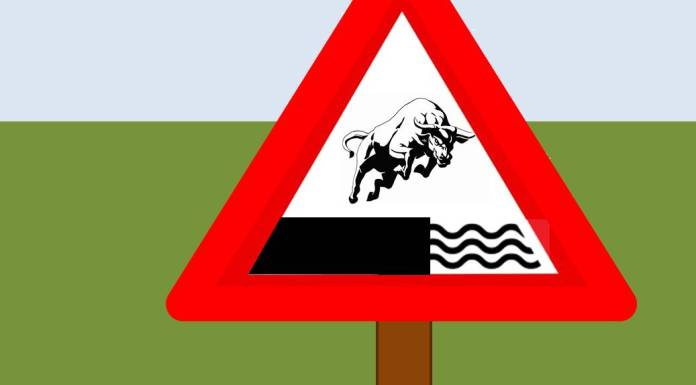 Why Stock Markets Fail