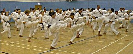 Image result for karate lesson