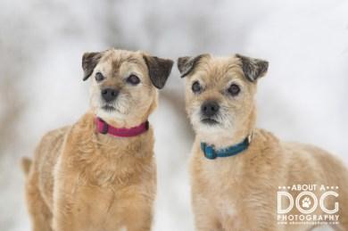 Sally & Rudy--7
