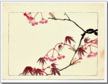 Shibata Zeshin - Hana Kurabe - Red Maple 1878