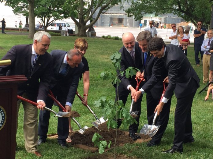 Planting the sapling of the Tree of Guernica in Washington
