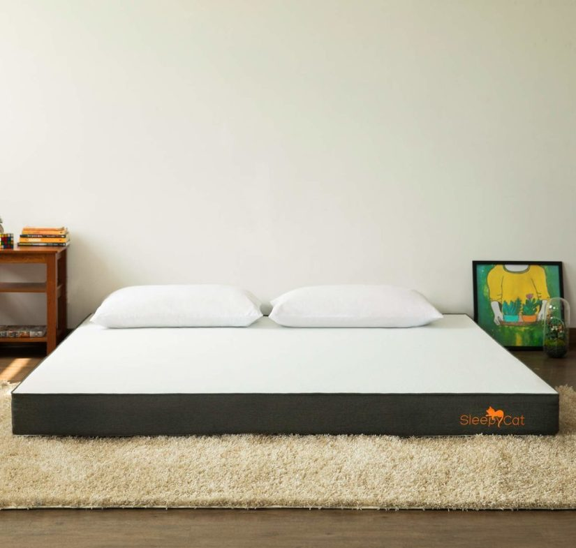 best mattress for back pain in India sleepyCat