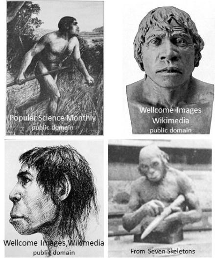 composite sketches of Piltdown man for AB