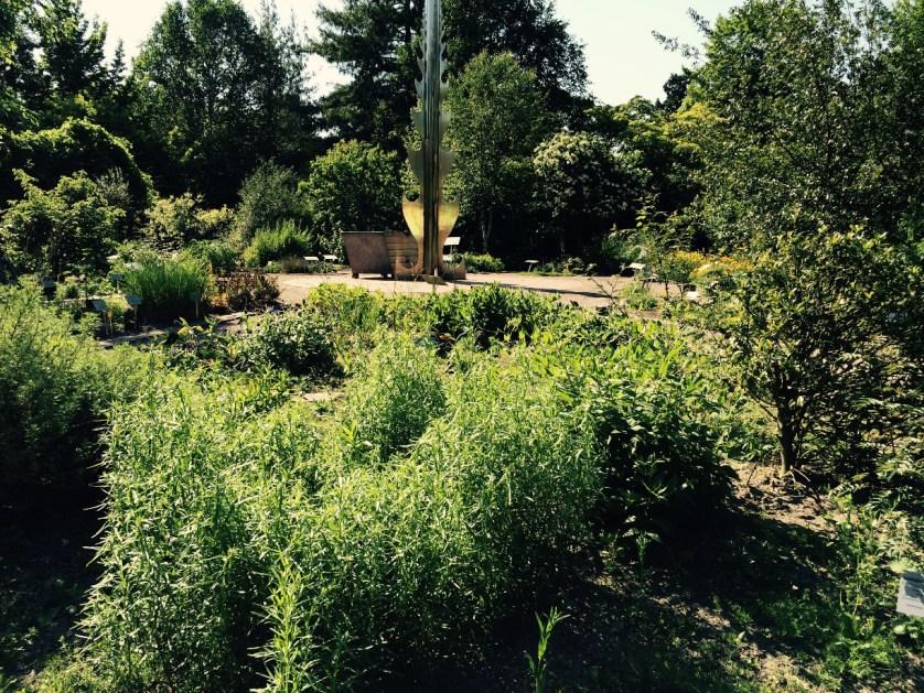 Botanischer Garten in Oldenburg (c) OTM