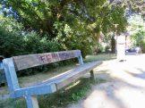 Diese Bank im »Seeliger Park« ist eher ein Schauobjekt als ein Sitzmöbel…