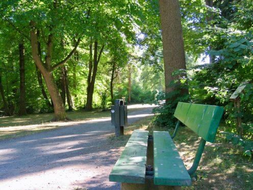 Der »Seeliger Park« Disc-Golf, Klänge von der Musikakademie und jede Menge Idylle