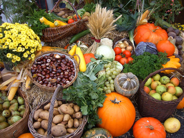 Kürbisse, Nüsse, Blätter