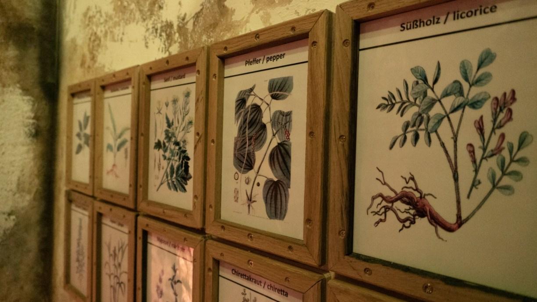 Ein Teil der Zutaten im Jägermeister ist in Form von schönen Bildern mit den gezeichneten Kräutern an den Wänden aufgehängt