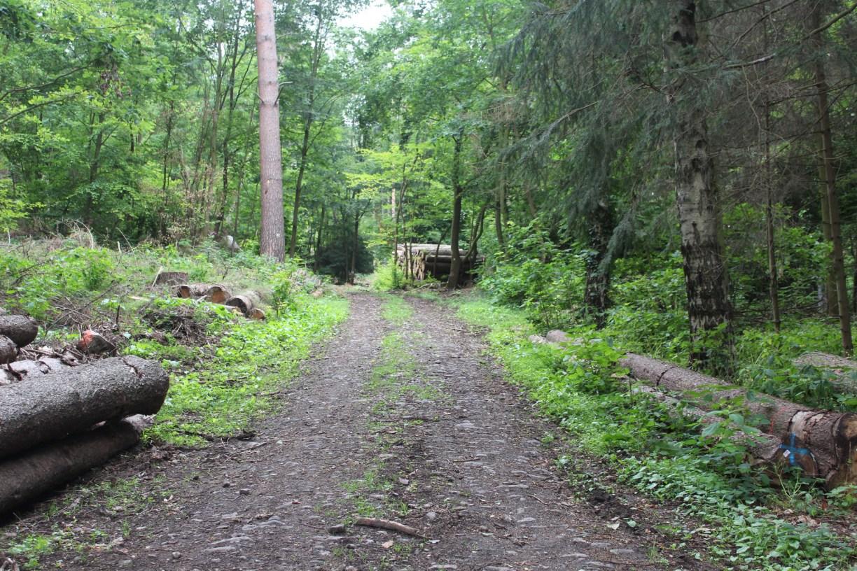 Ein Lost Place in Hann. Münden