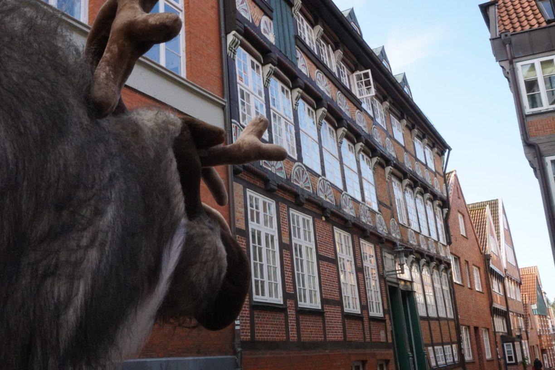 Gustav schaut sich das Traufenhaus an.