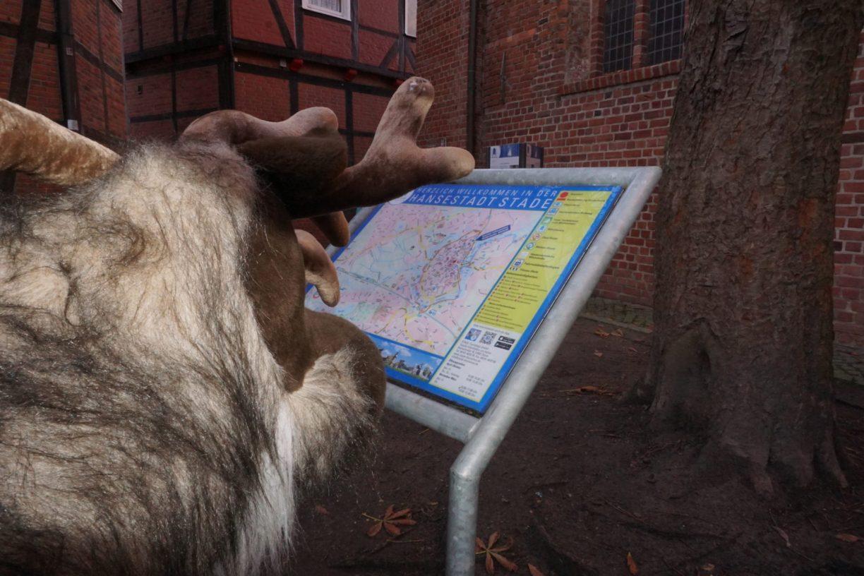Gustav liest den Stadtplan von Stade.