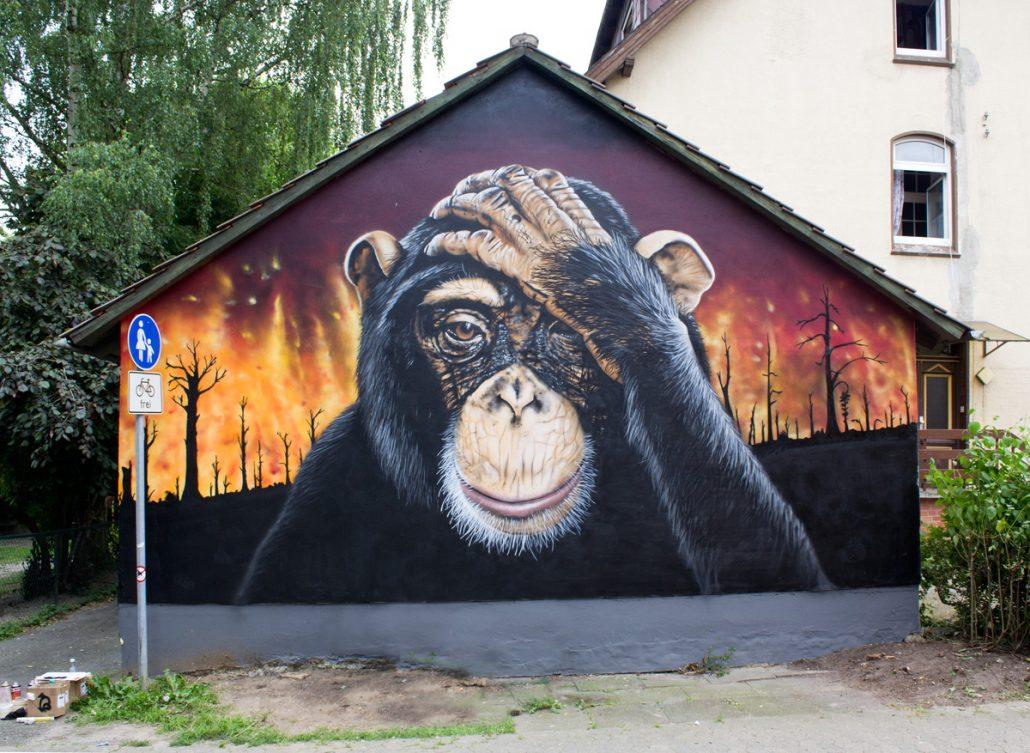 Schimpanse vor Feuer