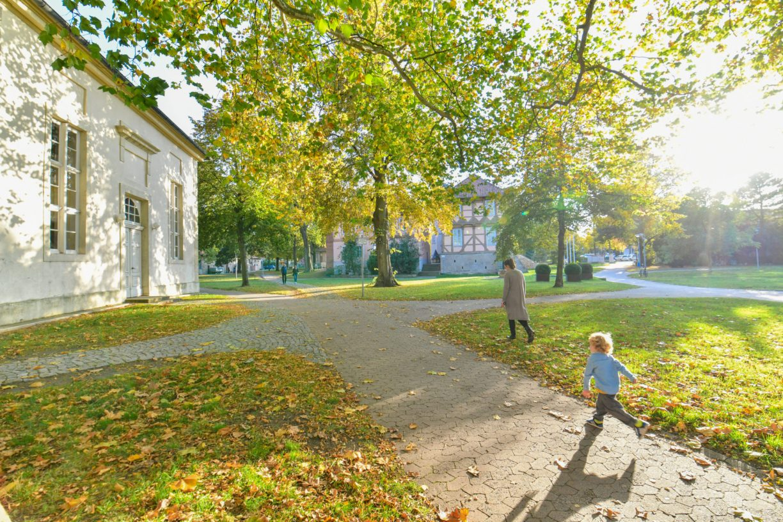 Fallersleben Schlosspark im Herbst