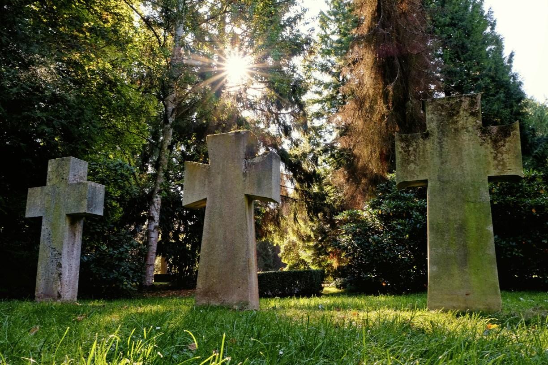 Besondere Parks und Grünanlagen: Der Stadtfriedhof in Göttingen