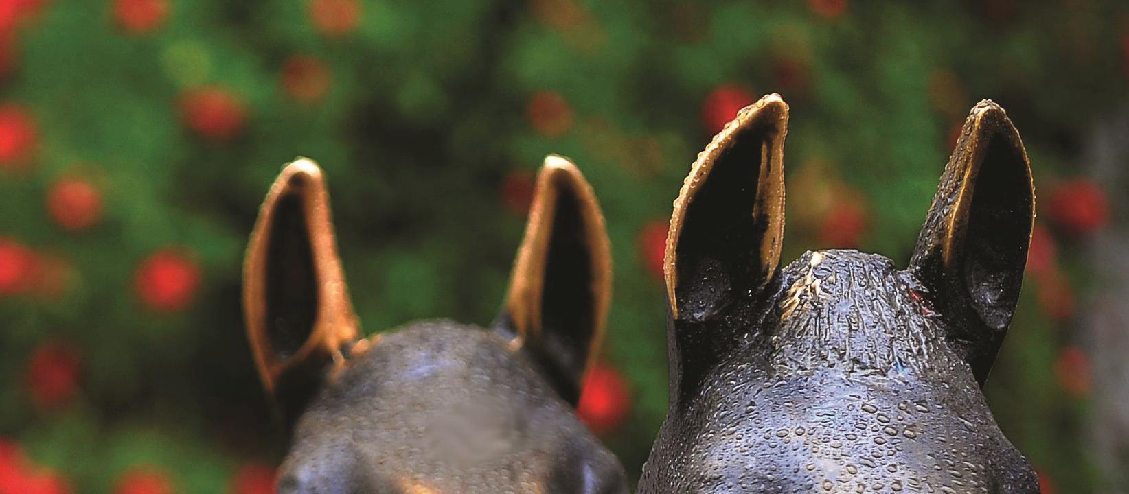Verden - Ohren der Bronzefohlen in der Fußgängerzone