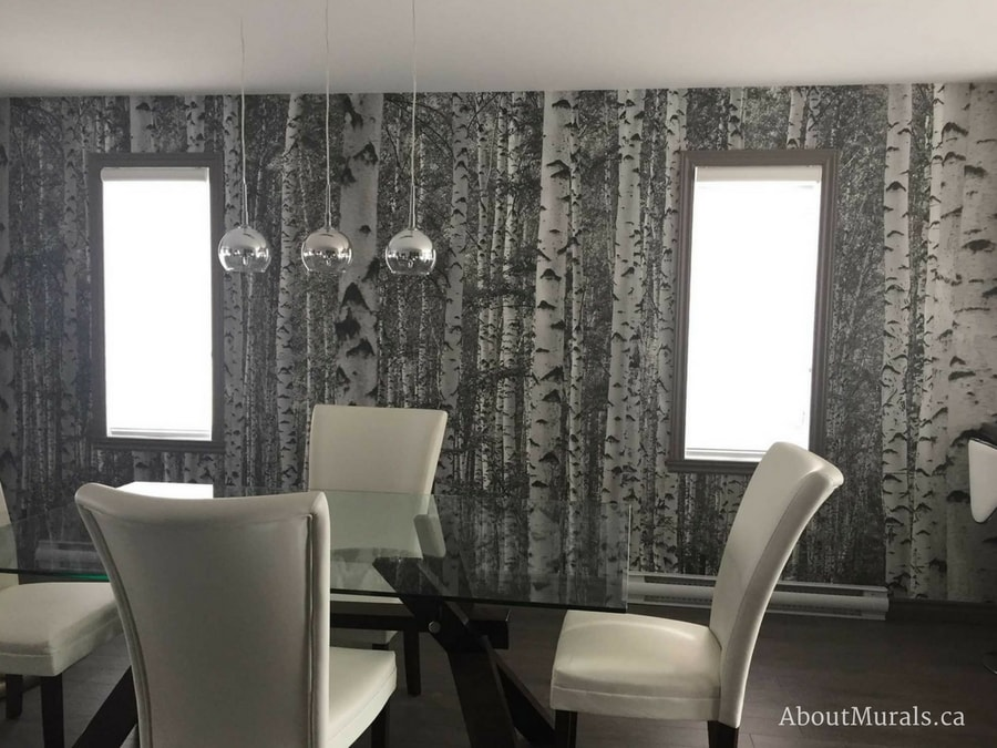 A birch tree forest black and white wall mural in a dining room