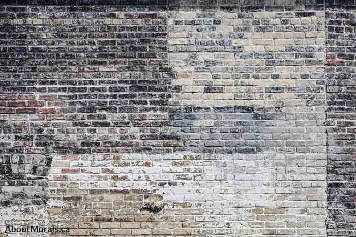 Old Multi Colored Brick Wall Mural features black and white decaying paint on aged bricks. Brick wallpaper sold by AboutMurals.ca.