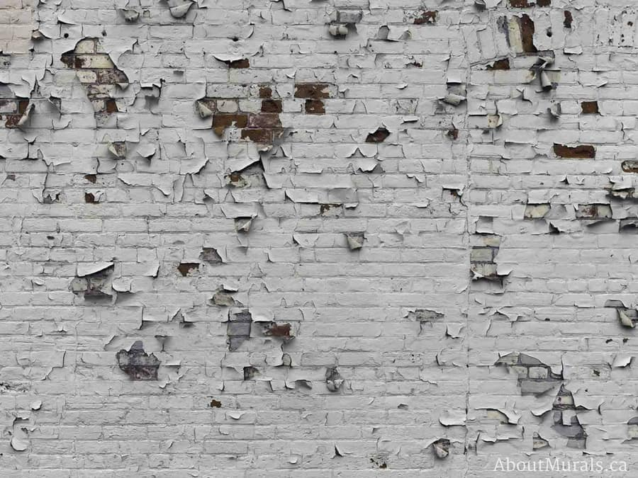 An industrial brick wallpaper with peeling white paint creates an urban feel. Wallpaper sold on AboutMurals.ca