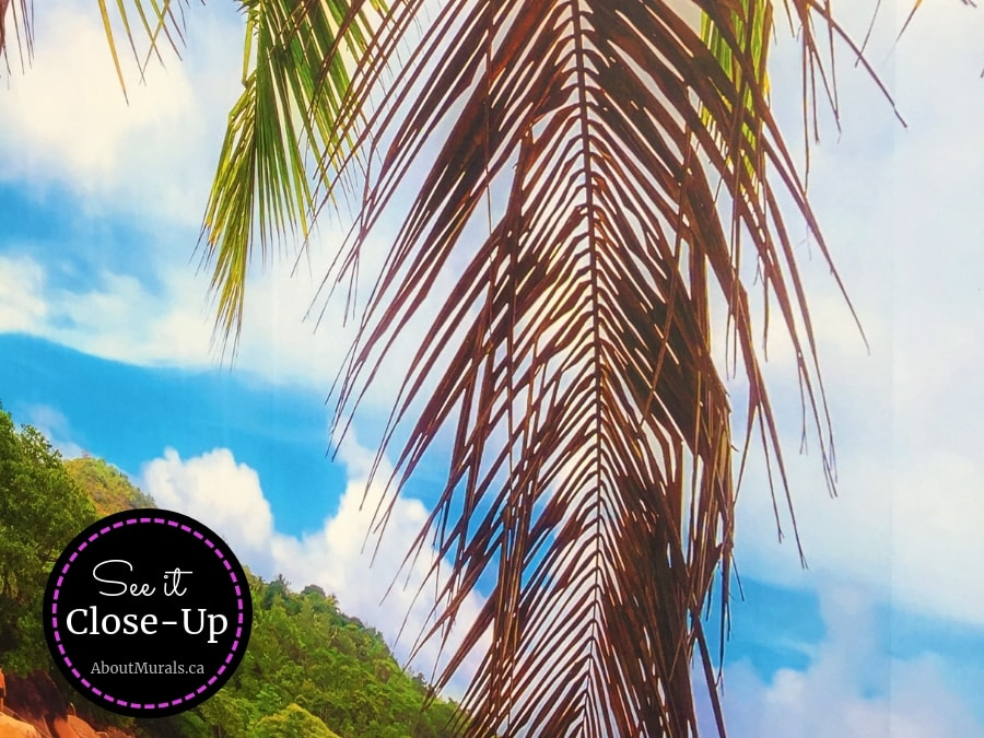 A closeup view of this Beach Wall Mural featuring a tropical palm tree against a blue sky. Beach wallpaper sold by AboutMurals.ca.