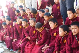 Small monks witnessing Tiji festival