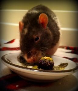 Dwayne Eating