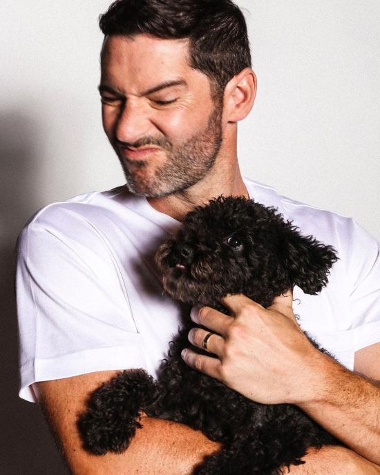 whiskeymccormack1 Tom Ellis 5.jpg