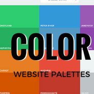 Color Palette Samples for Website Design