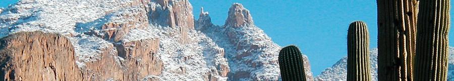 snowy mountains saguaros